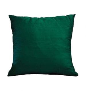 Leaf Green Silk Cushion available for Sydney hire