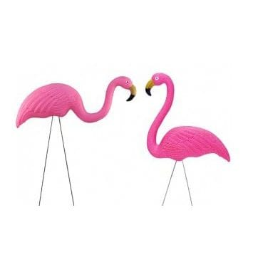 Plastic Lawn Flamingo Available for Sydney Hire