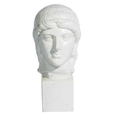 White Bust Statue available for Sydney hire