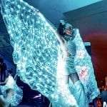 Hero Shot of LED Butterfly with white LED Wings
