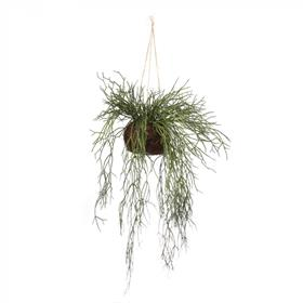 Artificial Hanging Sea Grass Vine in Natural Branch Wrap