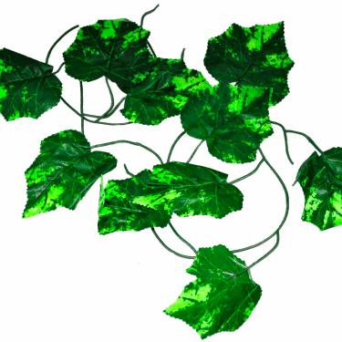 Vine Leaf Garland Stock Image
