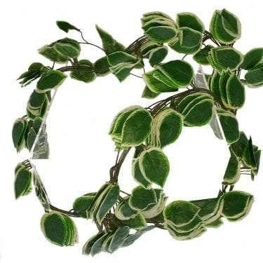 Stovk Image of Bright Edge Leaf Garland.